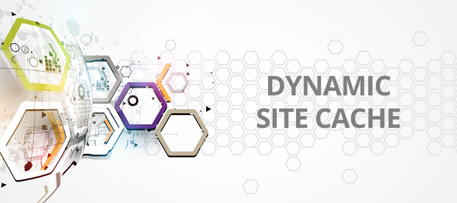Improve your Application's Performance with Dynamic Site Cache